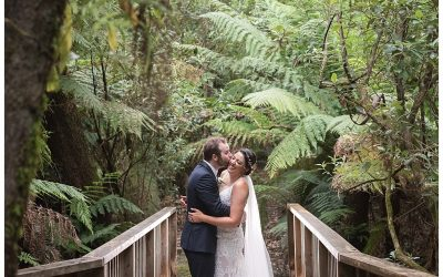 Celeste and Darren's Lyrebird Falls Wedding