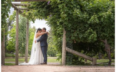 Lia and Geraldo's Immerse Winery Wedding
